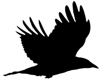 CrowTalkers flying crow signature logo